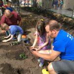 Volunteers helping students plant herbs in the garden.