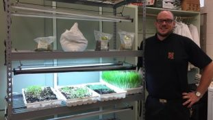 How to grow Microgreens at School, by Kamloops F2S_img_4