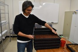 How to grow Microgreens at School, by Kamloops F2S_img_8